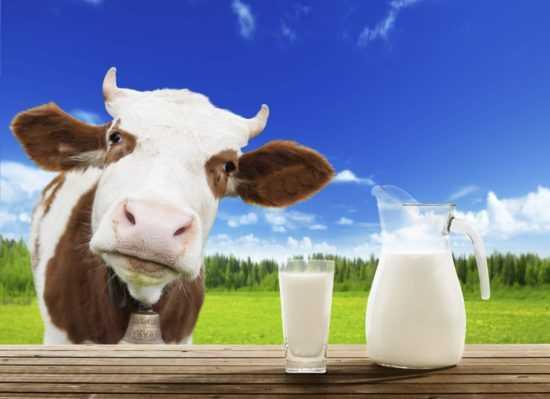 Парное молока