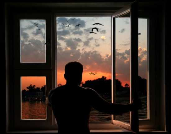 На закате солнца