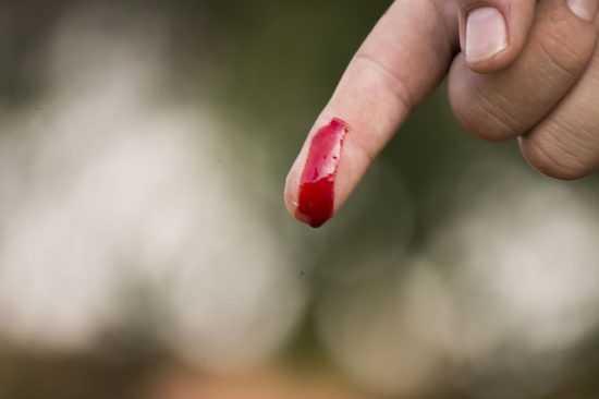 На крови