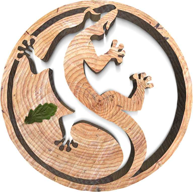 Символ саламандры