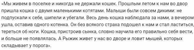 История 2