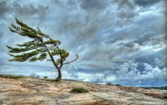 Таинство на ветер