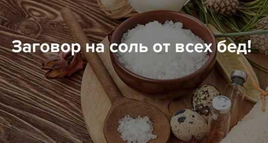Заговор на соль