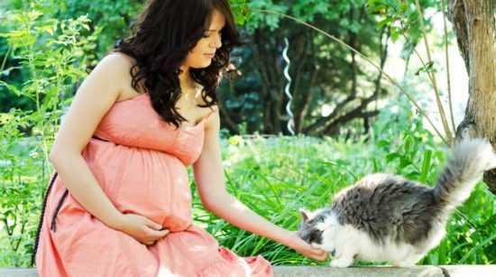 Беременная женщина и кошка