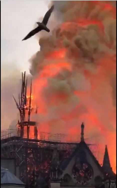 пожар Норт Дам де Пари